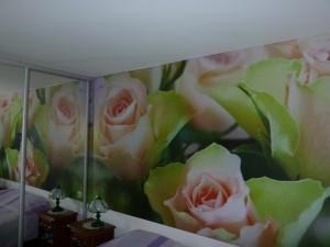 deco-interieur-mur-images-8