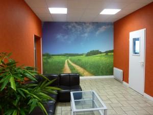 deco-interieur-mur-images-vue-panoramique